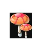 Peach Umbrella Mushroom