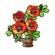 Poppy Jade