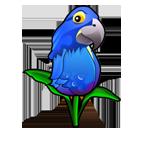 Specimen Blue Parrot Tulip