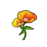 File:California Poppy.png