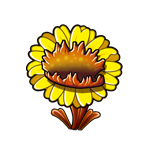 Carnivorous Sunflower