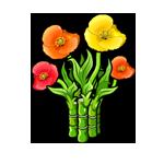 Poppy x Bamboo Hybrid
