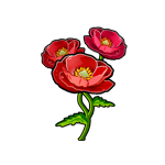 File:Fire Poppy.png