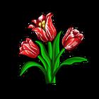 Broken Red Tulip