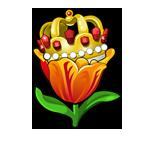 Specimen Emperors Crown Tulip