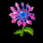 Specimen African Daisy