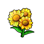 File:Golden Eye Daisy.png