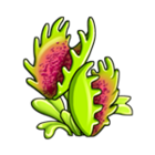 Monster Venus Flytrap
