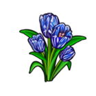 Broken Blue Tulip