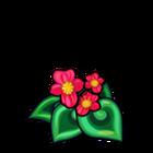 Scarlet Spiral Begonia
