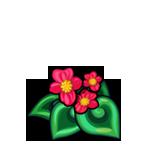 File:Scarlet Spiral Begonia.png