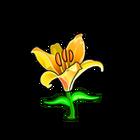Orienpet Lily