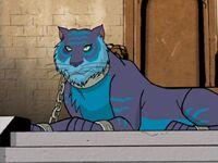 Blue tiger (102)