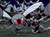 Flesh-eating Black Fly