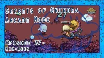 Let's Play Secrets of Grindea Roguelike Mode Episode 37 - Kir-Bees