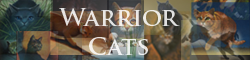 Warrior Cats 2