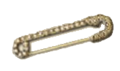 Collection Fixer Safety Pin.png