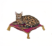 C0060 Purebred Cats i06 Bengal Cat