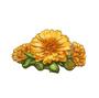 C0271 Medicinal Herbs i03 Calendula