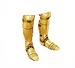 C0041 Golden Armor i03 Golden Greaves