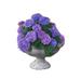 C0073 Flower Garden i01 Hydrangeas