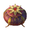 11 Inviolable Prohibition Witch's Flower