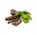 C0383 Sonorous Voice Elixir i05 Oak Bark