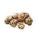 C0297 A Mushroom Experiment i01 White Truffles