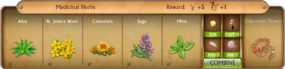 C0271 Medicinal Herbs cropped