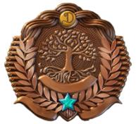 Regular Achievement icon