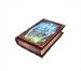 C0027 Secret Teachings i04 Palmistry Book