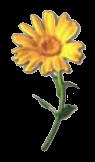 File:Crafting Item Flower.png