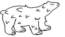 Медведица длинношёрстная