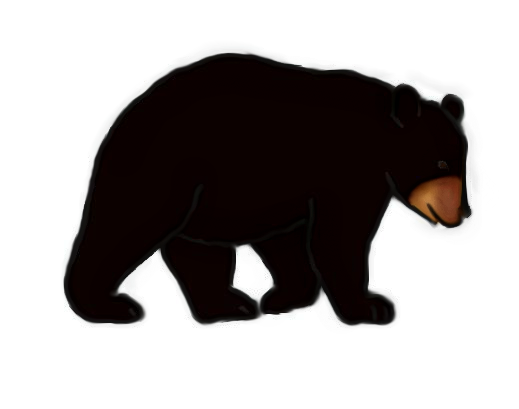filebear outline1png