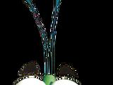 Bug (character)