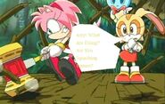 Amy Rose Trys To Spaush Enmies
