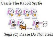 Cassie The Rabbit Sprite sheet