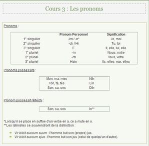 3. Les pronoms