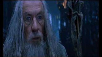 Le Seigneur des Anneaux, La Communauté de l´Anneau - Gandalf et Saruman-0
