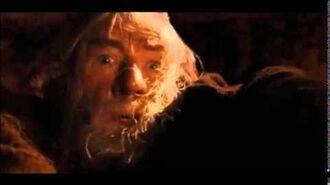 Le Seigneur des anneaux (**) Fuyez, pauvres fous !-0
