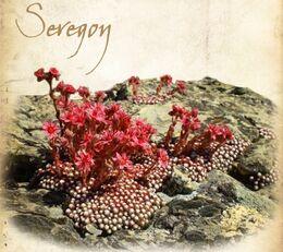 Seregon