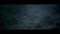 L'anneau dans une rivière