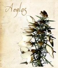 Aeglos1