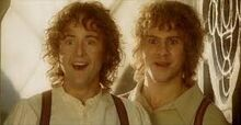 Pippin et merry