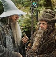 Gandalf et radagast