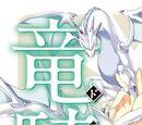 Seikoku no Dragonar (Novel Volume 1)