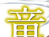 Seikoku no Dragonar (Novel Volume 20)