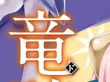 Seikoku no Dragonar (Novel Volume 10)