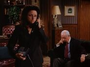 Seinfeld The Chaperone elaine-250x187