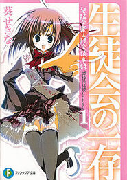 Light Novel Series